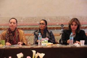 Mexico Proyecto Verde - Tereza Calzada Rovirosa