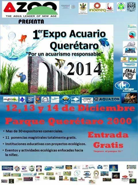 1er Expo Acuario Querétaro 2014
