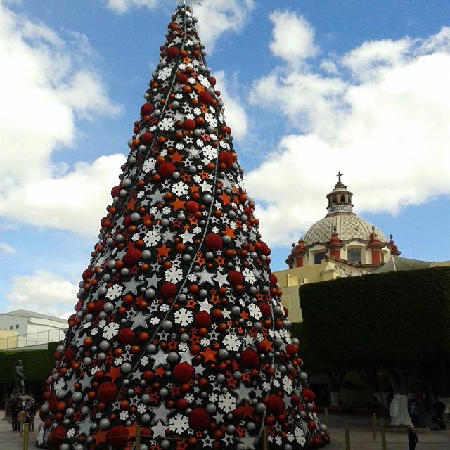 Jardín Guerrero en 360° (En Navidad)