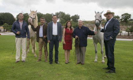 Querétaro será sede por 4ta ocasión consecutiva del Festival Internacional del Caballo Lusitano